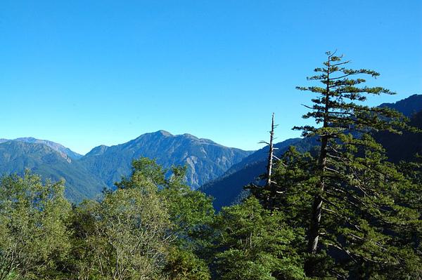 這麼美麗的山景竟然...