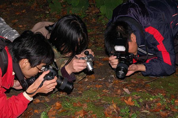 大家正在拍攝小阿龜