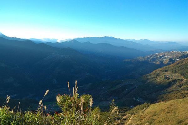 清晨山上的風景