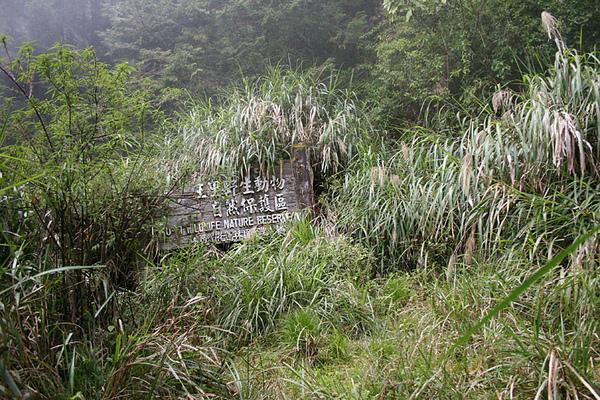 到達玉里野生動物保護區了