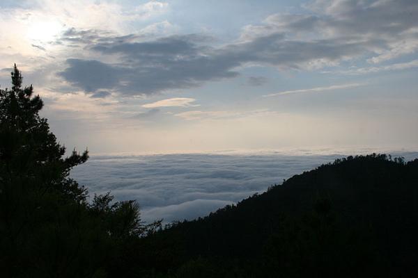 再來張雲海