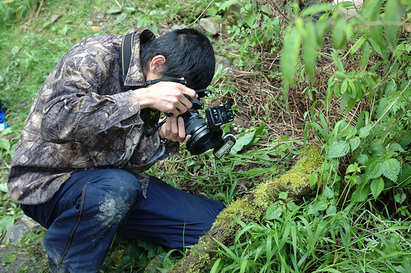 蜥蜴大正在拍攝台灣山椒魚