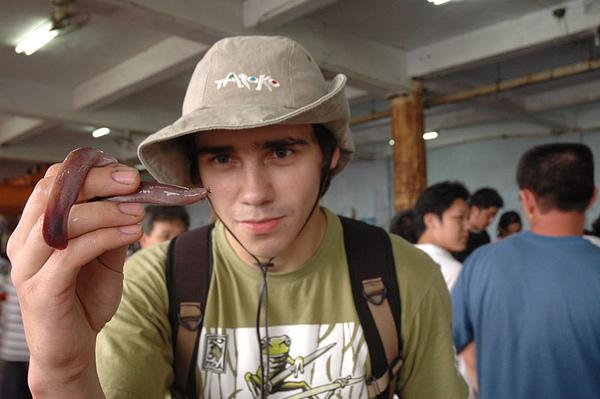 Nick和盲鰻