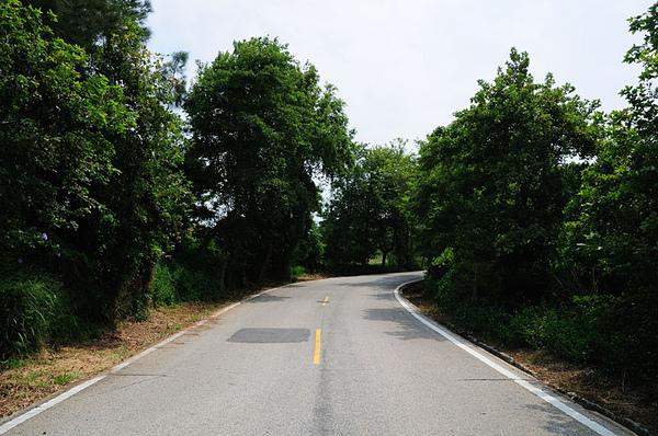 馬路...