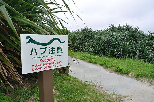 警告遊客要小心黃綠龜殼花(波布,Protobothrops flavoviridis)的告示牌~