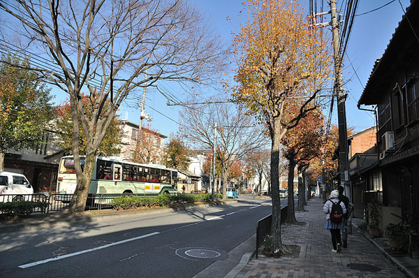 清爽的街道