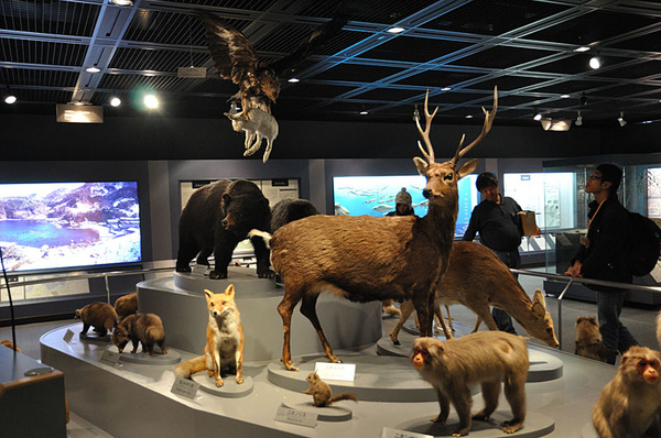 參觀兵庫縣立人與自然博物館