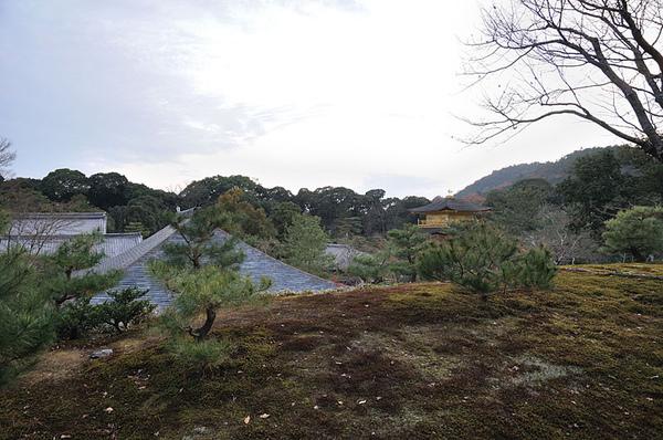 這裡還可以看到遠方的金閣寺