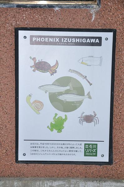 日本人做的這類生態圖片看起來是不會騙人的XD