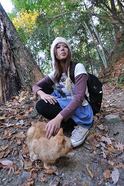 于綾和她遇到的另一隻貓咪~