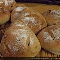 2011.12.27龐多米~ 紅酒葡萄麵包 007.jpg