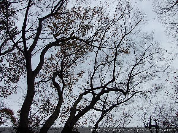 2012.01.01石門水庫半日遊 003.jpg