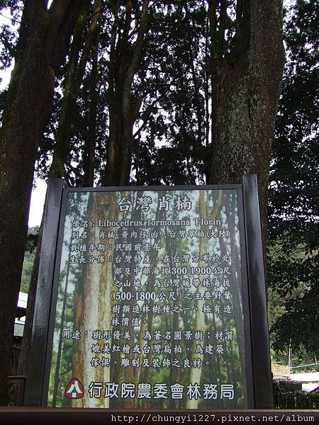 2012.01.27初3初4阿里山.高雄美濃旅遊 022.jpg