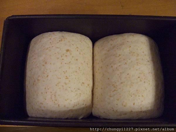 乳酪核桃麵包 002.jpg