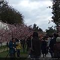 2012.2.19悠閒午後 014.jpg