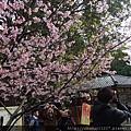2012.2.19悠閒午後 002.jpg