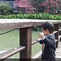 2.12.2.22碩碩新竹動物園半日遊 021