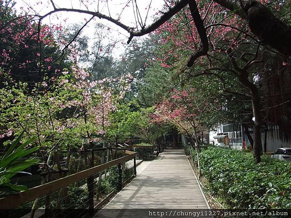 2.12.2.22碩碩新竹動物園半日遊 047