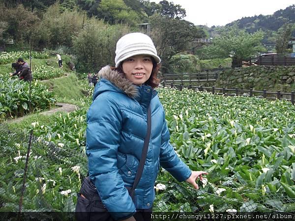 2012.3.24掃墓 陽明山竹仔湖一日遊 027