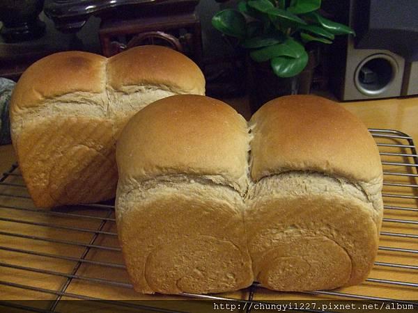 50%全麥吐司麵包 020