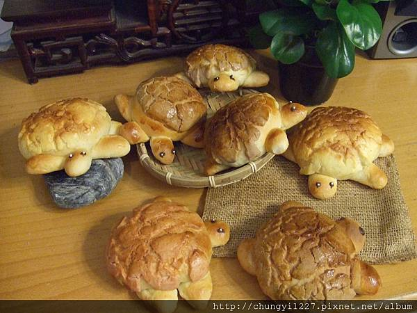 菠蘿小烏龜麵包 002
