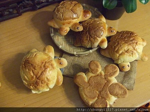 菠蘿小烏龜麵包 003