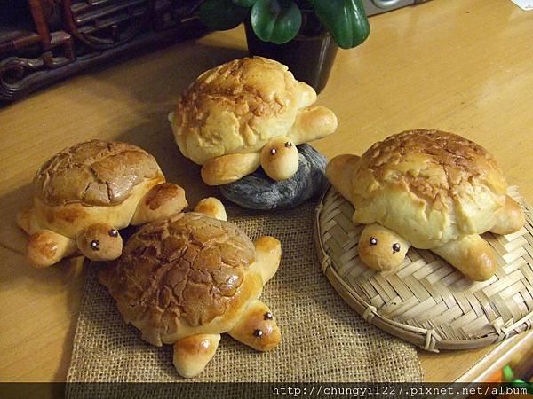 菠蘿小烏龜麵包 004