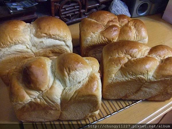 鮮奶起司-牛奶哈司麵包 001