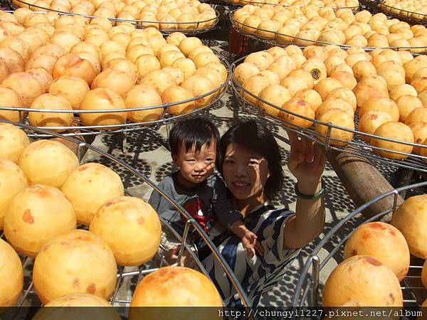 新埔味衛佳柿餅工廠 038