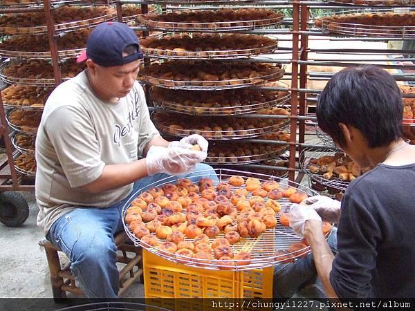 新埔柿餅節半日遊 047