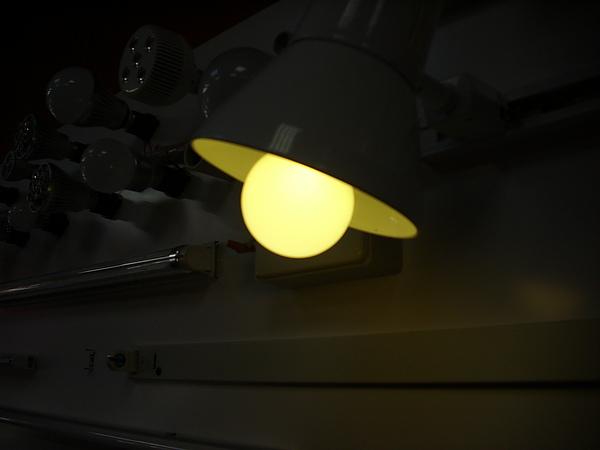 DSCI0397 (2).JPG