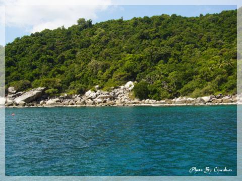 龜島 - 浮濳處