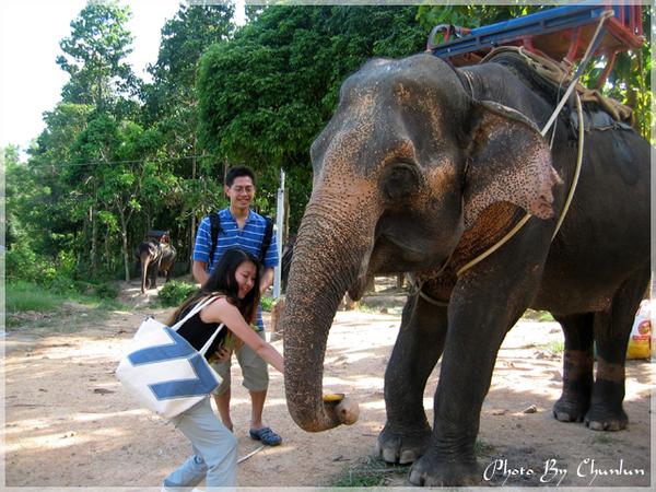 ELEPHANT TREKKING - 餵大象