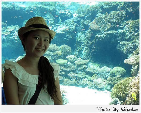 沖縄美ら海水族館 -靖