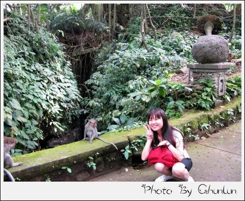 猴子森林 - 小猴 & 靖