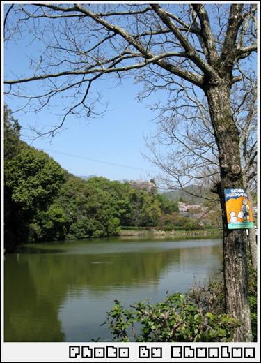 嵐山 - 景色
