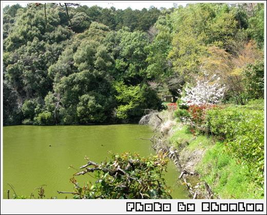 嵐山 - 湖