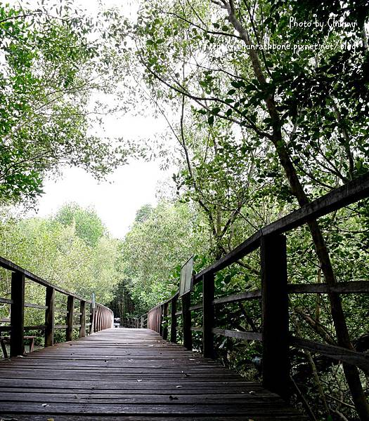 亞庇市區濕地生態區
