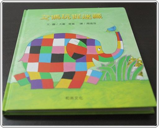 大象艾瑪勞作 (20)