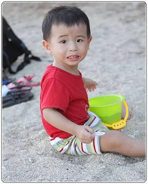 萬里桐 (10)