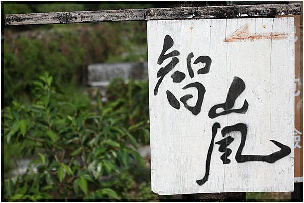 花蓮民宿 (10)