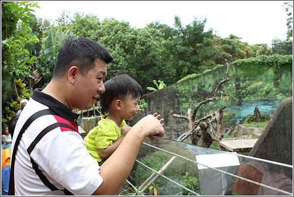 新竹市立動物園 (20)
