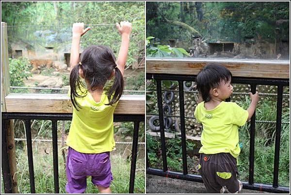 新竹市立動物園 (21)