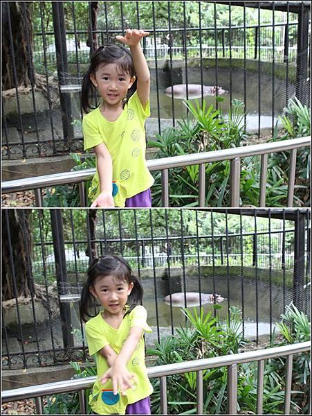 新竹市立動物園 (28)