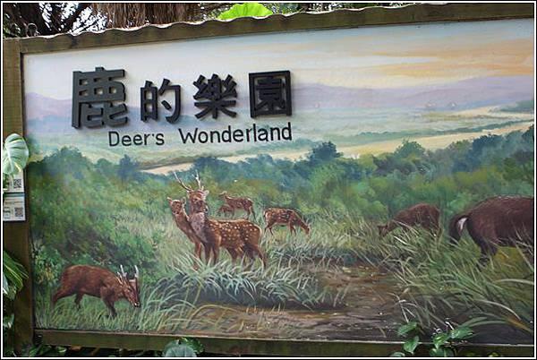 新竹市立動物園 (29)