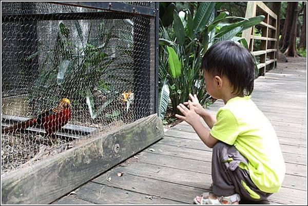 新竹市立動物園 (34)
