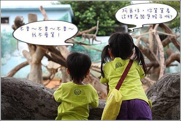 新竹市立動物園 (9)