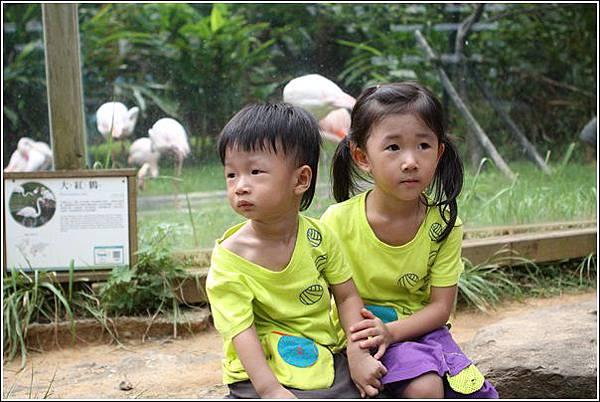 新竹市立動物園 (15)