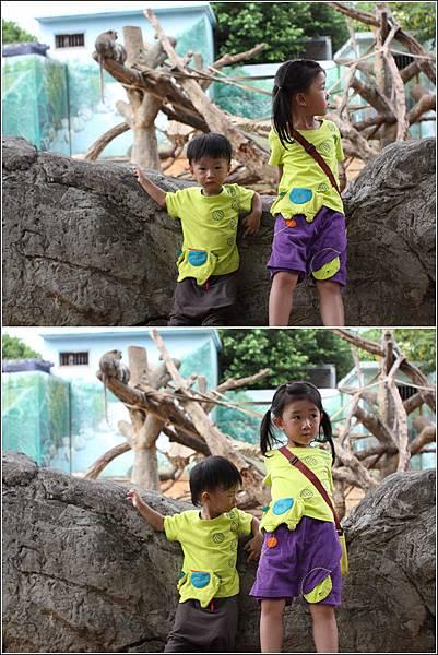 新竹市立動物園 (11)