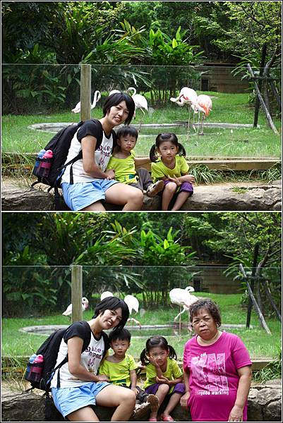 新竹市立動物園 (13)